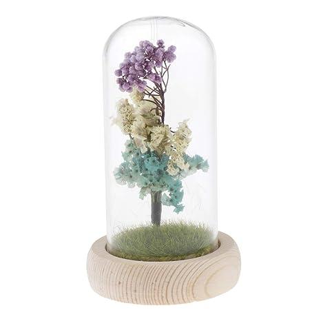 D DOLITY 1 Pieza de Vidrio Display Preservada Flower Flor para Casamiento Cubierta Decorados para Fiestas