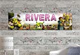 Customized Name Painting Shrek 2 Movie Poster With Your Name On It Personalized Banner