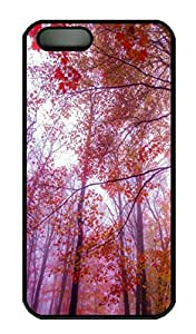 iPhone 5S Case, iPhone 5 Cover, iPhone 5S Foggy Colors Hard Black Cases