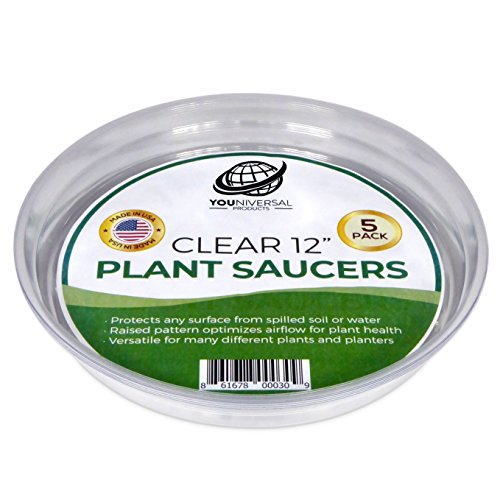 YOUniversal Products Clear Plant Saucers - 5 Pack of 12 Inch - Excellent For Indoor & Outdoor Plants