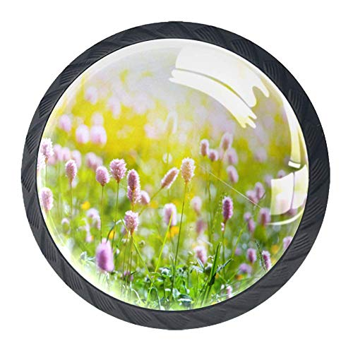Wild Flowers Cabinet knobs Crystal Convex Lens Form 3D Figure Display for Drawer Cupboard Wardrobe Closet Pull Handle to Decorate Kidsroom Livingroom Kitchen,1.38 X 1.1 inch 4 PCS Round knob (Wildflowers Knob)