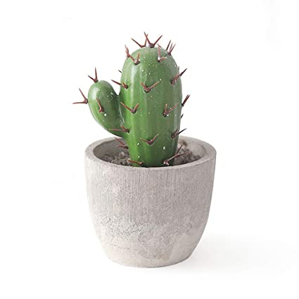 Amazon com: Riverbyland Faux Gray Potted Cactus Artificial