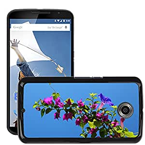 Hot Style Cell Phone PC Hard Case Cover // M00150640 Background Beautiful Bougainvillea // LG Google Nexus 6