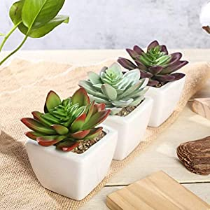 "Efavormart Set of 3 | 4"" Assorted Faux Succulent Mini Green Plant in White Ceramic Pot 28"