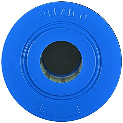 Pleatco Cartridge Filter PWK65 65 sq ft Watkins Hot Spring Spas 31114 w/ 1x Filter Wash