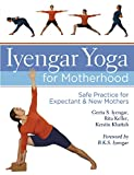 img - for Iyengar Yoga for Motherhood: Safe Practice for Expectant & New Mothers book / textbook / text book