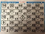 American Games 1on Double Action Bingo Paper Cards (500 Sheets Per Pack)