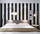 Stuffwholesale Black&White Stripe Wallpaper Roll Mural Wall Paper 20.5 Inches Wide (Black&Not Pure White Stripe)