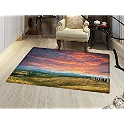 smallbeefly Tuscany Bath Mats for bathroom Tuscany Italy Cypress Trees and Fields Crop Cloudy Sky Holiday Destination Door Mats for inside Non Slip Backing Vermilion Khaki