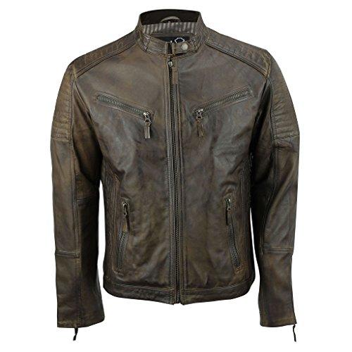 Pour Cuir Urbain Éclair Vintage Biker Homme Avec Marron Rétro Veste Fermeture Aviatrix En Véritable Style q6Z4wqE0