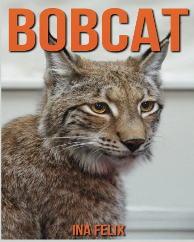 Bobcat: Children Book of Fun Facts & Amazing Photos on Animals in Nature - A Wonderful Bobcat Book for Kids aged 3-7 from Felix Ina