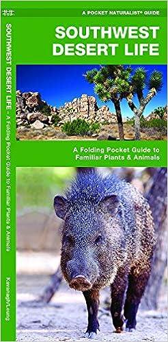 Southwest Desert Life A Folding Pocket Guide To Familiar