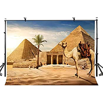 LYLYCTY 7x5ft Pyramid Backdrop Ancient Civilization Country Egypt Pyramid Camel Photography Backdrop Photo Photography Background Props Studio Indoor Decorations LY102
