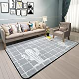 Hyun times Carpet simple fashion Nordic cactus full floor bedroom living room coffee table with bedside mats ( Color : B , Size : 100150cm )