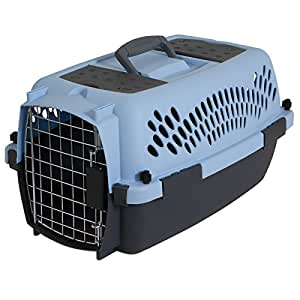 Aspen Pet Porter Fashion Kennel- Up to 10 lbs