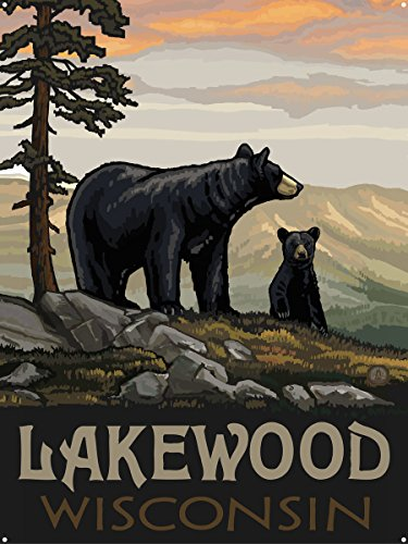 Lakewood Wisconsin Metal Art Print by Paul A. Lanquist (18