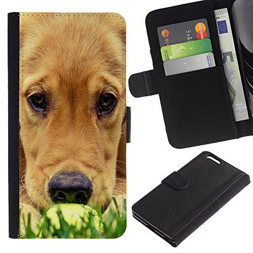 Be Good Phone Accessory // Caso del tirón Billetera de Cuero Titular de la tarjeta Carcasa Funda de Protección para Apple Iphone 6 PLUS 5.5 // Labrador Golden Retriever Muzzle Grass D