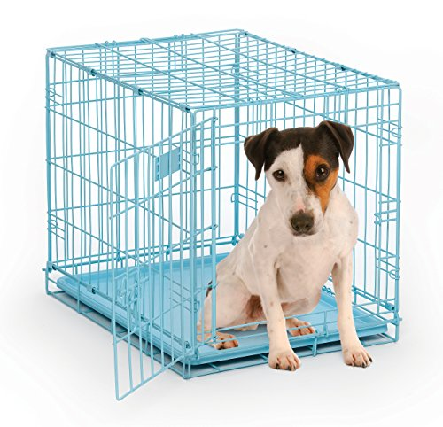 Blue Dog Crate | MidWest iCrate 24