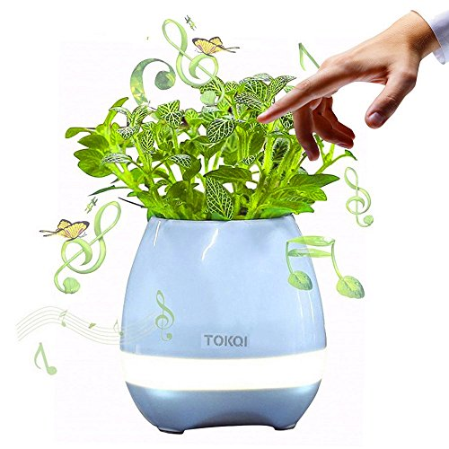 Hot 【Letitfly】Music flowerpot, Smart plant pot with LED Night Light, Touch a Real Plant to Play the Piano Music, Light Round the Pot, Rechargeable (Without Plants) (blue) for sale