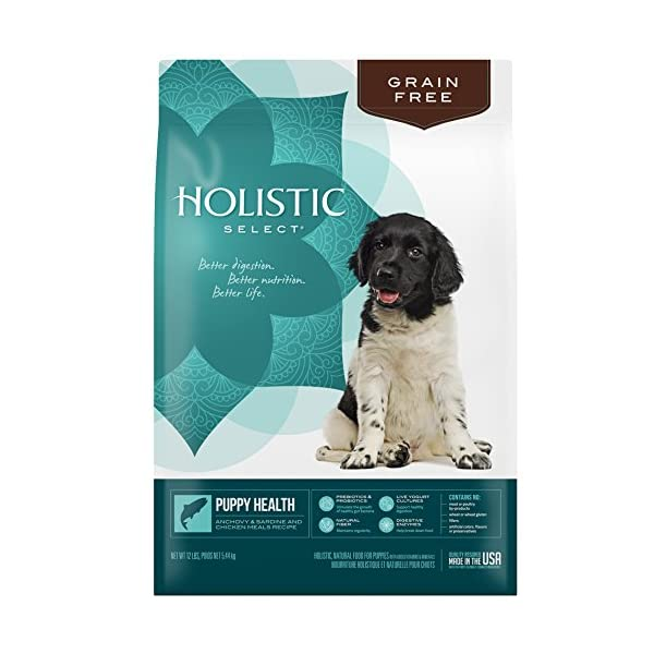 Holistic Select Natural Grain Free Dry Dog Food, Puppy Anchovy, Sardine & Chicken Meal Recipe, 12-Pound Bag