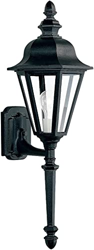 Sea Gull Lighting 8823-12 Outdoor Sconce with Clear Glass Shades, Black Finish