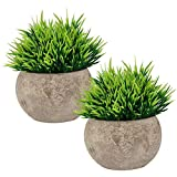 Wansang Fake Plant for Bathroom/Home Decor, Small Artificial Faux Greenery for House Decorations (Potted Plants)