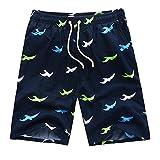Men's Printing Quick Dry Beach Board Shorts Swim Trunks, Large, Darkblue