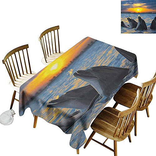 DONEECKL Animal Soft Fabric Tablecloth Quick Wipe Photo of The Bottle Nosed Dolphins in Sunset Ocean Sea Animals Aquatic Print Blue Grey Orange W70 xL120