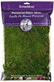 Super Moss 21552 Preserved Sheet Moss,Color enhanced, 8-Ounce
