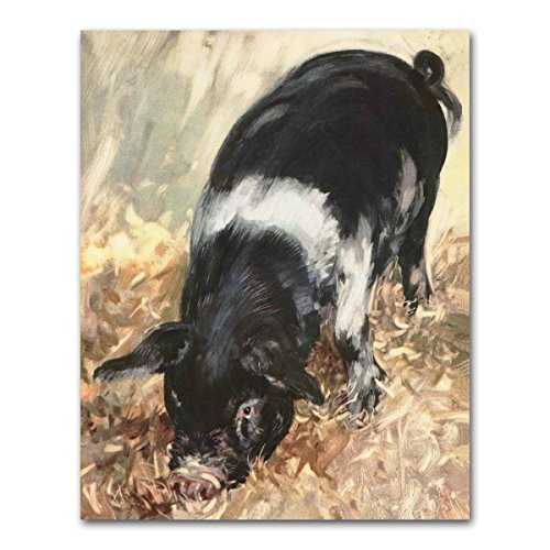 Pig Art (Rustic Country Wall Decor, Farm Print, Baby Animal Nursery)