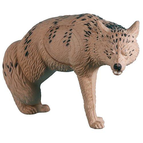 Ibo Pattern - Rinehart Coyote Target IBO Pattern