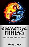 Elemental Ninjas