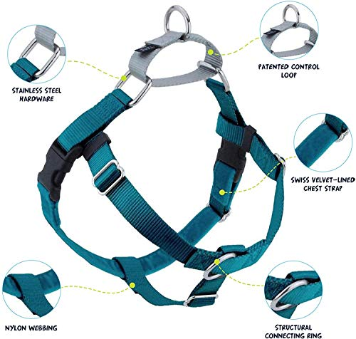 """2 Hounds Design Freedom No-Pull Dog Harness and Leash, Adjustable Comfortable Control for Dog Walking, Made in USA (Large 1"""") (Teal)"""