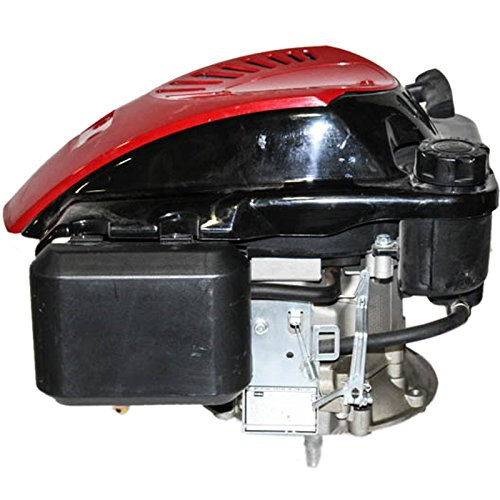 Loncin 6.5HP Vertical Stepped-Threaded Shaft for Some Toro, Fuel Tank, Recoil Start, Scratch and Dent, Engine