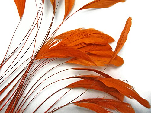(Moonlight Feather | 1 Dozen - Orange Stripped Coque Tail Feathers Wholesale Craft Supplier)