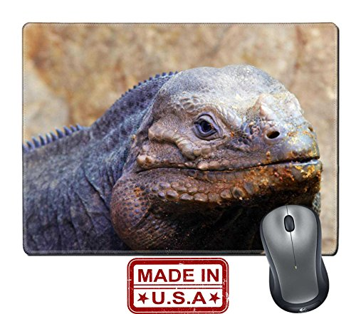 Liili Natural Rubber Mouse Pad Mat With Stitched Edges 9 8  X 7 9  Closeup Of A Lizard Photo 511809