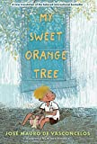 img - for My Sweet Orange Tree book / textbook / text book