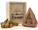 Alternative Imagination Premium Palo Santo Cone Burner, Pyramid Design (Brown)