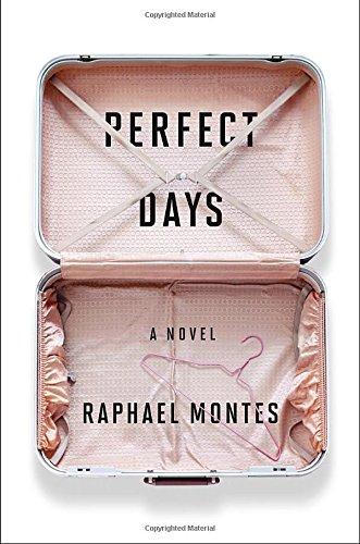 Read Online Perfect Days: A Novel ebook
