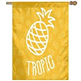 HUANGLING Little Tropical Exotic African Pineapples Hawaiian Fun Summer Joy Symbol Home Flag Garden Flag Demonstrations Flag Family Party Flag Match Flag 27''x37''