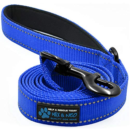 Max and Neo Reflective Nylon Dog Leash - We Donate a Leash to a Dog Rescue for Every Leash Sold (Blue, 6 FT)