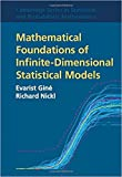 img - for Mathematical Foundations of Infinite-Dimensional Statistical Models book / textbook / text book