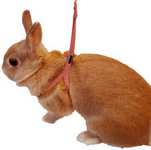 ドギーマンハヤシ『ミニアンマン ウサギのかんたんハーネスリード』
