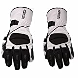 Sdcvopl Protective Gloves Motorcycle Full Finger Gloves Winter Waterproof Warm Gloves for Motorbike Cycling Racing Hiking Ventilation (Color : Gray, Size : L)