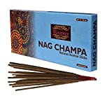 raajsee Nagchampa Incense Sticks 100 Gm Pack-100% Pure Organic Natural Hand Rolled Free from Chemicals-Perfect for Church,Aroma Therapy,Relaxation,Meditation,Positivity & Sensual Therapy 100 GMS Pack