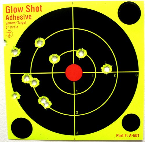6 inch shooting targets - 2
