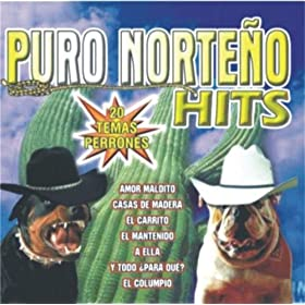 from the album puro norteño hits 20 temas perrones january 5 2004