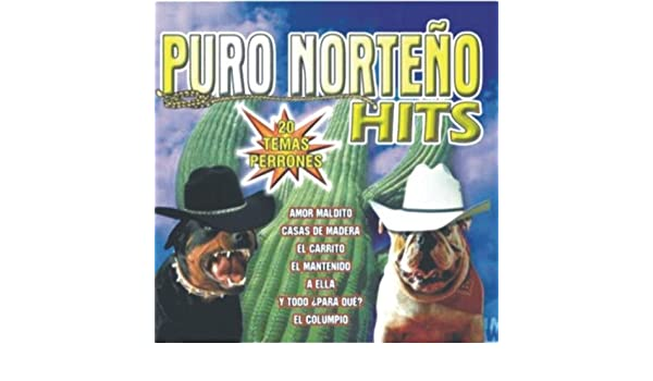 Casas De Madera by Enigma Norteño Y Furia Tejana on Amazon Music - Amazon.com