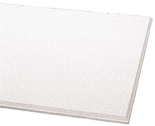 ARMSTRONG DUNE ANGLED TEGULAR CEILING PANEL, 15/16 IN., 24X24X5/8 IN., 16 PIECES PER SINGLE CARTON, 1774N 1/EA Carton