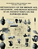 Archaeology of the Bronze Age, Hellenistic, and Roman Remains at an Ancient Town on the Euphrates River : Excavations at Tell Es-Sweyhat, Syria Volume 2, Holland, T A, 1885923333